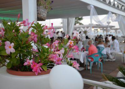 mirage beach festa 12